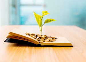 Young plant growing out of book with coins. Knowledge concept