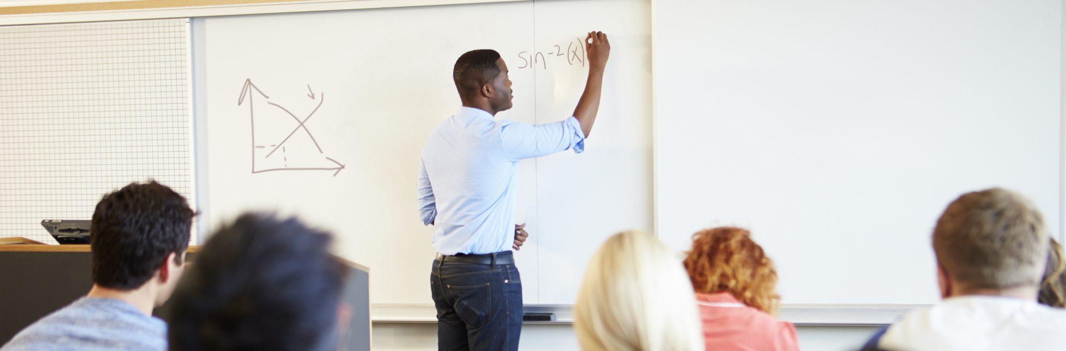 Graduate Student Teaching a Class
